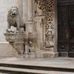 Portal Lion
