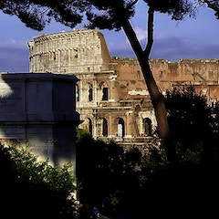 Rome - Coliseum & Arch Of Titus from Palatine Hill