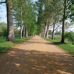 Path in Christ Church Meadow