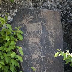 Temani Pesh-wa Petroglyph Trail