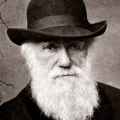 Portrait of Charles Darwin (1881)