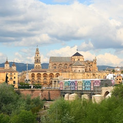 Mezquita from South