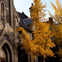 Portland Church with Autumn Leaves