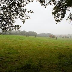 Birthplace of Jane Austen