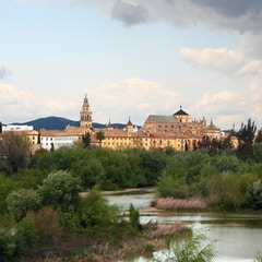Mezquita from Afar