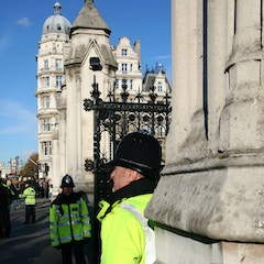 Guards at the Houses of Parliament