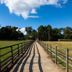 Path at Chesters Roman Fort