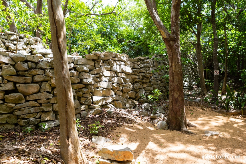 Wall in the Jungle (Tulum, Mexico)