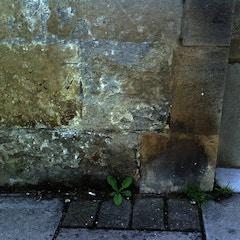 Worn benchmark on St Nicholas' Church