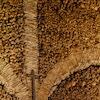 Capela dos Ossos (Bone Chapel)