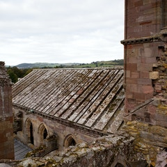 Nave from Above