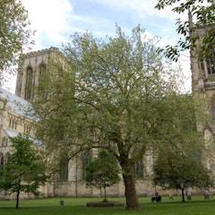 North Side of York Minster
